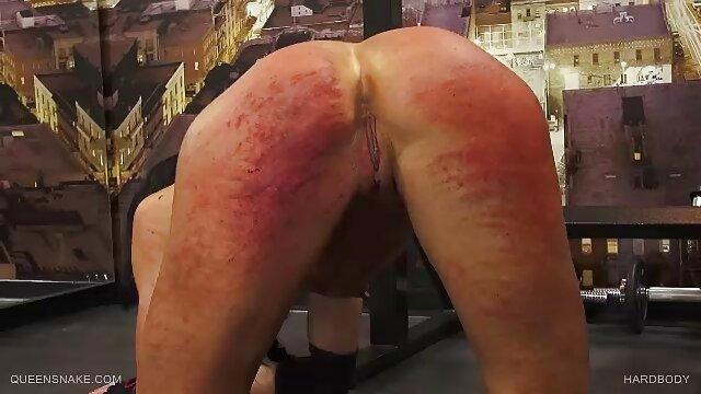 Beste porno keine Registrierung  TS Bdsm Sex Videos Seidige scharfe reife damen Sekretärin Gebunden und Geknebelt